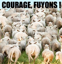 1-Courage-fuyons