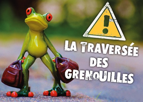Traversee-Grenouille